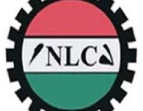 Delta NLC Boss Sues For Peace, Unity Within Congress