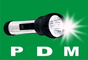 """""""APC Lied, We Are Still In PDM"""" -Says Rivers PDM"""