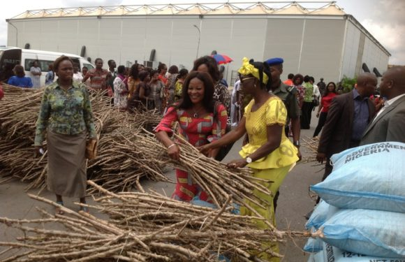 Delta: Deaconess Uduaghan Flags-Off Distribution Of Farm Inputs To Rural Women