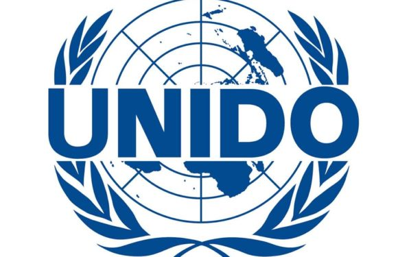 Delta Partners UNIDO To Grow Agribiz, Others