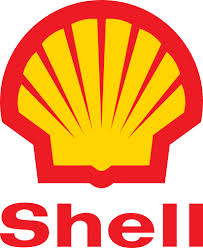 TNPL: Group Wants Alison-Madueke To Halt Shell's Planned Cancellation Of Niger Delta Projects