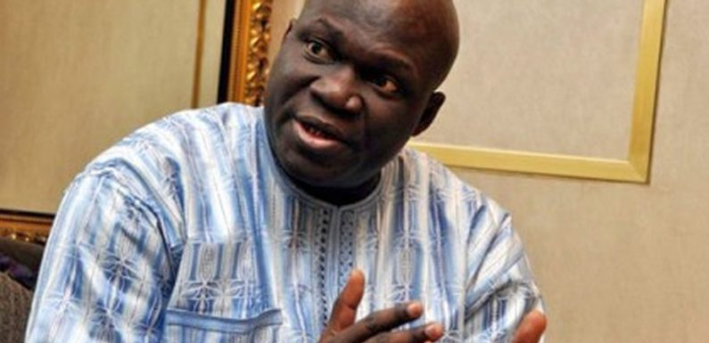 Opinion: Who Released, Killed And Ate Our Lion?  –By Reuben Abati