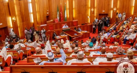 State Police: Senate Plots To Move Policing From Exclusive To Concurrent List ***Governors To Establish, Manage Police Force In States