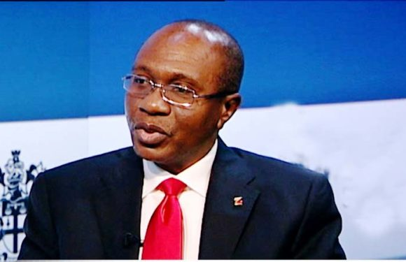 Nigeria's CBN Governor Emefiele Emerges African Central Banks President