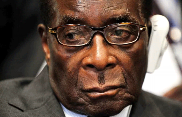 Zimbabwe: Low-Key Coup Halts World's Oldest President *First lady Grace Mugabe Flees To Namibia  *93 Yr Old Robert Mugabe Under House Arrest *Buhari warns against unnecessary conflict