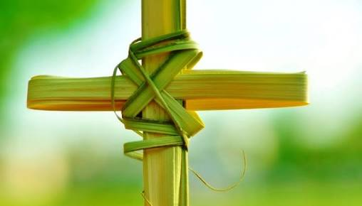 REFLECTION: THE ESSENCE OF PALM SUNDAY –By Celestine Ofuani