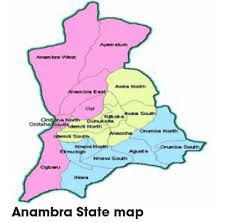 REVEALED: Anambra Loses Over N6 Billion To Revenue Fraudsters Yearly – Madubuko