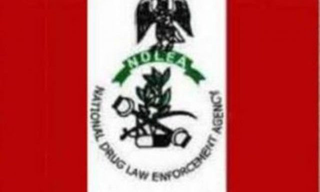 NDLEA Arrests 380 Persons With Drugs Worth Over N1 Billion