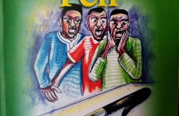 Book Review: Mr Benjamin's Pen –By Tony Nwaka