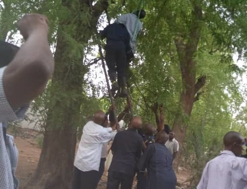 Gov. Shettima Reacts To Personal Steward's Suicide –As Police Plans To Conduct Autopsy, Question Family, Friends