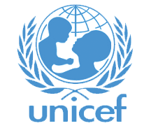 Northeast crisis: UNICEF condemns use of children as human bombs