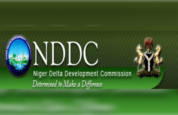 NDDC:  Extend Probe To N'Delta Ministry, Amnesty Program –IMG Urges FG