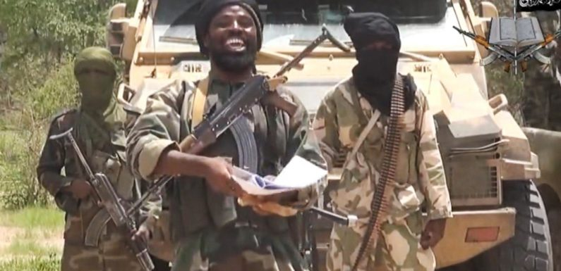 "Nigerian Army Releases 25 ""Repentant"" Boko Haram Terrorists Brought From Niger Republic"