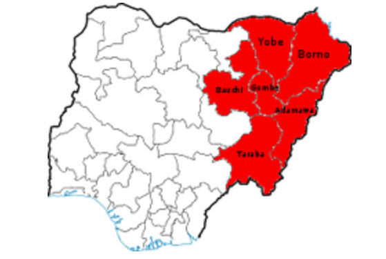 NIGERIA: Degenerating Insecurity In N' East Worrisome, Says United Nations