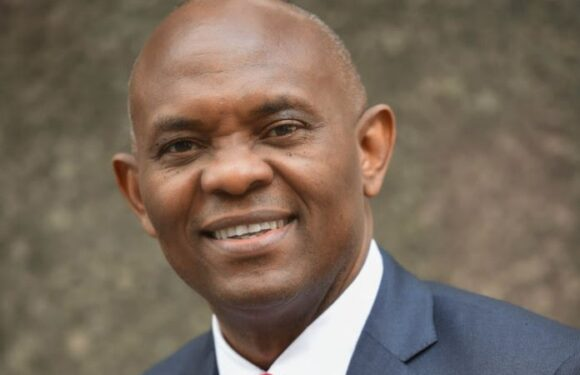 N41bn Fraud Allegation: Tony Elumelu Demands Apology From Sen. Akinyelure
