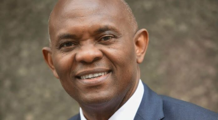 Elumelu: Senate C'ttee Chair Akinyelure, Backtracks On N41bn Fraud Allegation