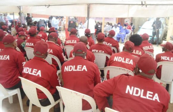 Two Months Cocaine, Heroin Seizures In 2021 Exceeds 2019 At MMIA -NDLEA Boss