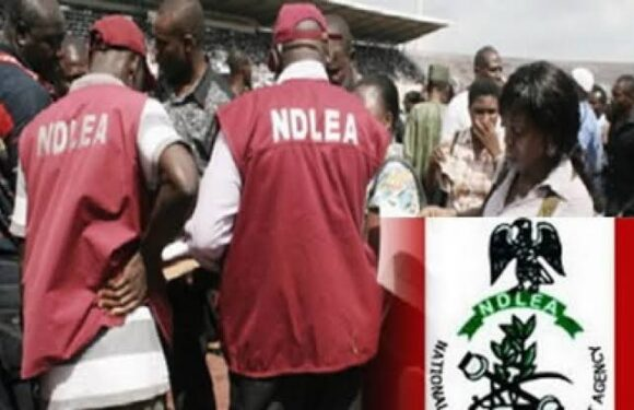 Marwa Warns NDLEA Officers Against Hostage Arrest, Illegal Detention