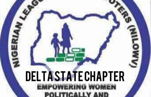 Women Voters (NILOWV) Commend Gov Okowa For 17 Female Delta LG Vice Chairmen
