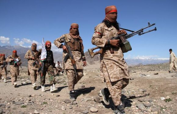 AFGHANISTAN: THE RETURN OF THE TALIBAN