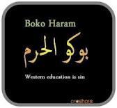 Boko Haram: Criticisms of deployment of 150 Cameroonian vigilante, mere ignorance –Borno Gov.