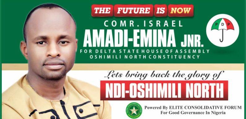 PDP Delta Assembly Hopeful Comrade Israel Amadi-Emina Jnr …Young, Vibrant, Astute Politician