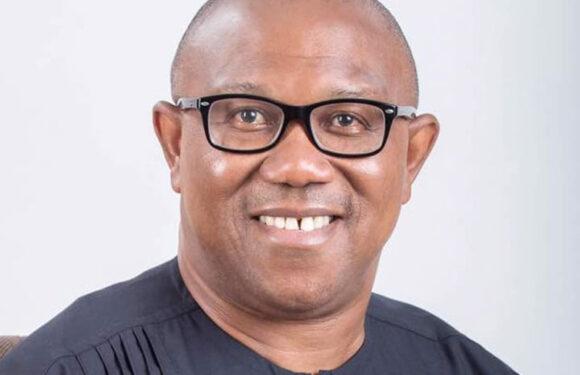 Pandora Papers: I Broke No Law, Says Peter Obi